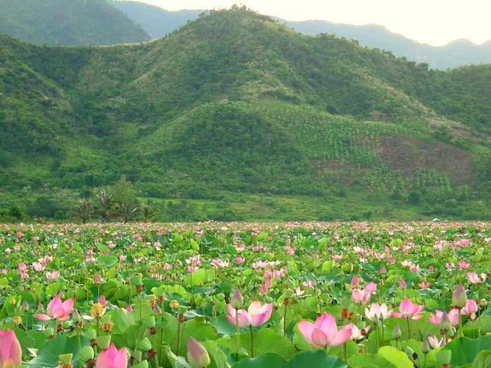 Top 12 Địa điểm du lịch hấp dẫn nhất ngay gần Hà Nội có thể bạn chưa biết